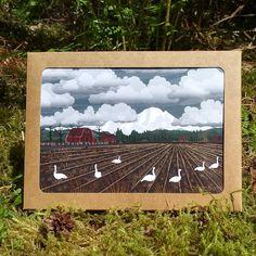 Box Set of six Greeting Cards - Bellingham Mud Swans - 6x4