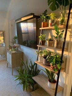 Room Ideas Bedroom, Bedroom Decor, Bedroom Inspo, House Plants Decor, Plant Decor, Bedroom With Plants, Aesthetic Room Decor, Plant Aesthetic, Cozy Room