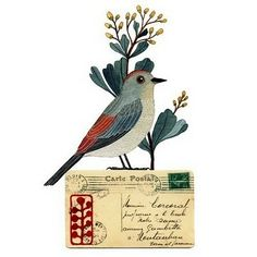 postcard with stamp, cursive writing and lovely bird with flower branch