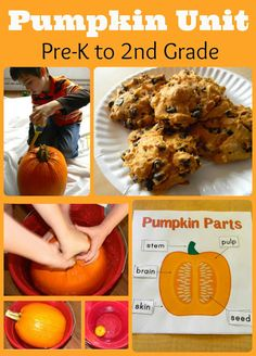 Pumpkin themed learning activities for Pre-K - 2nd grade. Book suggestions, several science activities, hands-on math ideas, pumpkin art, and a simple book-inspired snack.
