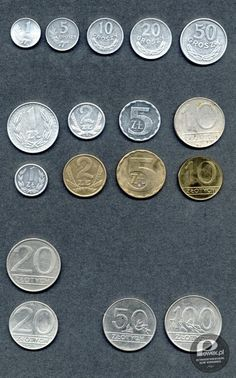 Old polish coins