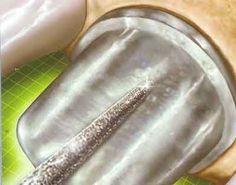 "UMDNJ & Ex. N.J. Sen. Wayne Bryant Must Tell Truth About Millions Spent On R For ""Illegal Dental Microchip Implants And Mind Control Program""."