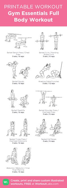 Gym Essentials Full Body Workout –illustrated exercise plan created at WorkoutLabs.com • Click for a printable PDF and to build your own #customworkout