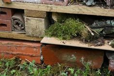 Hôtel à insectes : comment le fabriquer ? Tutoriel illustré - Promesse de Fleurs Firewood, Diy, Inspiration, Gardens, Pallet Gardening, Insect Hotel, Mulches, Biblical Inspiration, Woodburning