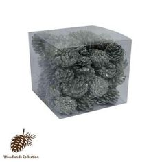 Martha Stewart Living Silver Woodlands Pinecones (set of 60