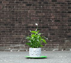 Shape-Shifting Origami Pot Grows With The Plant Over Time