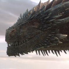I appreciate you. Drogon Game Of Thrones, Game Of Thrones Dragons, Got Dragons, Game Of Thrones Art, Mother Of Dragons, Fantasy World, Dark Fantasy, Fantasy Art, Fantasy Creatures