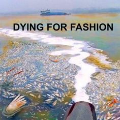 Find out how the clothes we buy is causing this dreadful harm. With tips on how to cut down this global threat