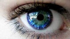 Resultado de imagen para imagenes de ojos de colores