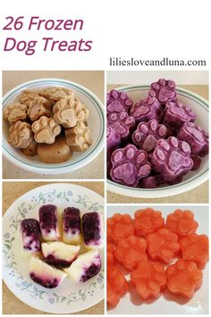 A variety of frozen dog treats to make for your dog this summer.