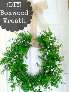 {DIY} boxwood wreath - My House and Home