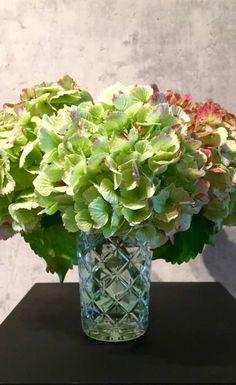 Wie mache ich Hortensien haltbar? Es wäre doch ganz wunderbar, wenn wir den   Sommer konservieren können. Am besten macht sich das mit   Blüten.   Hortensien, Blumen und Blüten kann man einfach mit Glycerin konservieren.   Mehr zum Thema Blumen haltbar machen erfahrt Ihr auf unserem Blog.