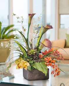 Shop Exotic Silk Orchid Arrangements & Plants at Petals