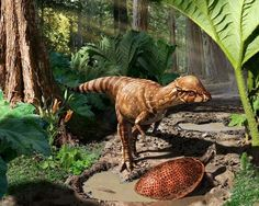 Small new dinosaur unearthed -- it was a real bonehead