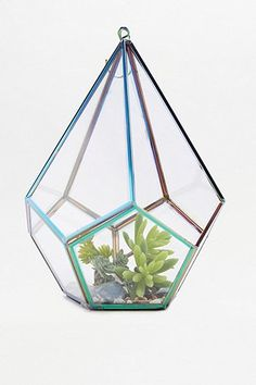 Shop Oil Slick Terrarium at Urban Outfitters today.