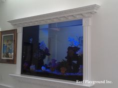 A great 300g saltwater fish-only aquarium maintained by Reef Playground.