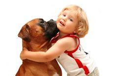 Medidas simples protegem crianças de mordidas de cachorro