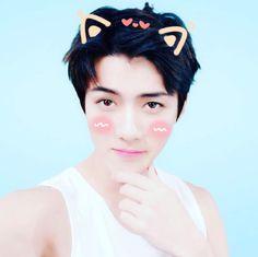 Sehun EXO só cute  Oh Sehun Brasil (@OHSBrasill) | Twitter