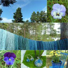 Indigo-päivä   #jussakka #indigo #sininen #blue