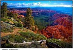 Bryce Canyon by Moyan_Brenn, via Flickr