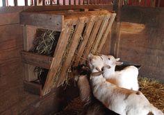 Wood Pallet Hay Feeder
