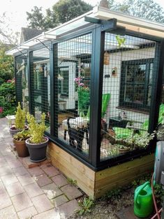 Outdoor Cat Enclosure, Diy Cat Enclosure, Patio Enclosures, Verge, Outdoor Cats, Cat House Outdoor, Outdoor Cat Cage, Outdoor Decor, Cat Room