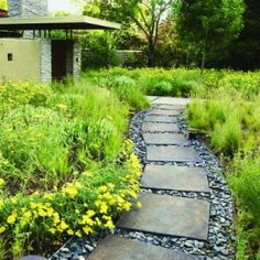 The pavers in the gravel path, surrounded by plants. Seems low maintenance.