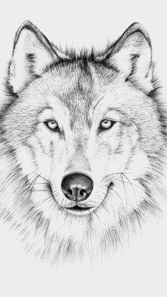 Wyuen Wolf Temporary Tattoo Stickers Waterproof Women Fake Hand Animal Tattoos A. - Wyuen Wolf Temporary Tattoo Stickers Waterproof Women Fake Hand Animal Tattoos A… Wyuen Wolf Te - Pencil Drawings Of Animals, Animal Sketches, Art Drawings Sketches, Wolf Drawings, Wolf Head Drawing, Wolf Tattoos, Body Art Tattoos, Cross Tattoos, Wolf Tattoo Design