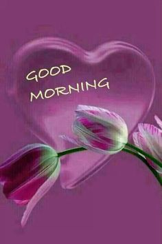 Love never fails Good Morning Picture, Good Morning Good Night, Morning Pictures, Morning Images, Good Morning Honey, Morning Pics, Good Morning Greetings, Good Morning Wishes, Day Wishes