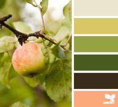 fresh hues color palette from Design Seeds Colour Pallette, Color Palate, Colour Schemes, Color Combos, Color Patterns, Palette Art, Green Palette, Color Harmony, Design Seeds