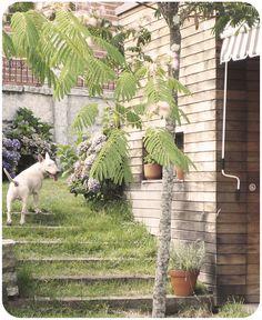 small house at Francelos