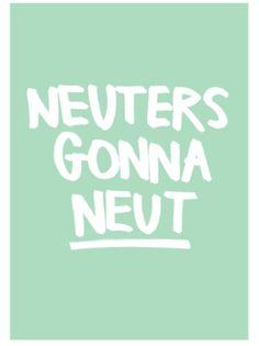 Poster Neuters gonna Neut - Mint