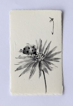 Ink art drawing Ladybug drawing insect drawing by ArtGalleryReina