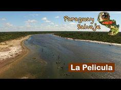 Paraguay Salvaje: Sobrevolando - YouTube