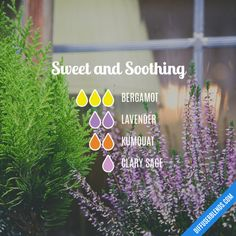 Sweet and Soothing - Essential Oil Diffuser Blend
