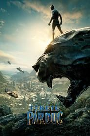 Black Panther Soundtrack: This movie is full of action and thrill. Under the directory of Ryan Coogler, this superhero film … Marvel Movies List, Marvel Films, Avengers Movies, Movie Posters For Sale, Marvel Movie Posters, Black Panther 2018, Black Panther Marvel, Black Panthers, Panther Pictures