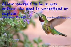 Positive Inspirational Quotes - Community - Google+