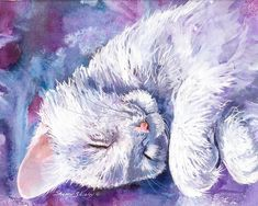PAINTING - WHITE KITTEN SLEEPING
