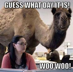 guess what day it is..wooo...woo..
