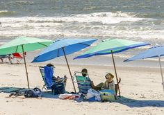 Plan your trip to the beach with Garden City Realty. Garden City Beach, Surfside Beach, Beach Vacation Rentals, Real Estate Sales, Plan Your Trip, Patio, Outdoor Decor, Life, Terrace