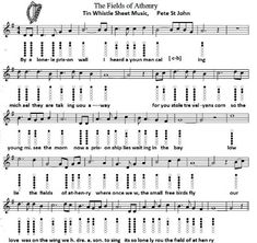 Image result for fields of athenry tin whistle