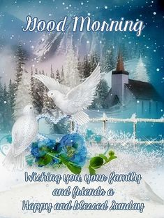 Good Morning...Happy and Blessed  Sunday.