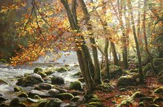 Landscapes Archive Gallery