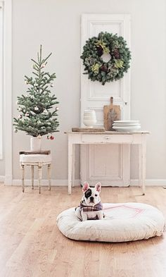 20 Gorgeous Holiday Decor Ideas | Holiday decorations for Christmas 2016 - tiny tree + green wreath