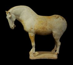 A beautifully sculpted Chinese Tang Dynasty pottery sculpture of a horse standing foursquare on a rectangular base. Broad chested and powerful, this horse is of the Ferghana breed (of the northern steps of central Asia) that were prized for their spirit and vitality. White slip glaze