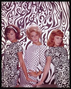Pictured here are the Bradley sisters– Bobbie Jo, Billie Jo and Betty Jo from 'Petticoat Junction'. Petticoat Junction is a situation comedy that originally aired from September 1963 to April Gorgeous Redhead, Gorgeous Blonde, Beautiful, Meredith Macrae, Lori Saunders, Petticoat Junction, The Beverly Hillbillies, 60s And 70s Fashion, Old Shows