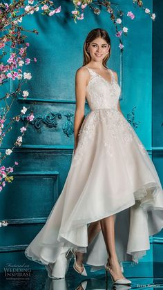 ellis bridals 2018 sleeveless v neck heavily embellished bodice romantic high low a  line wedding dress open v back sweep train (5) mv -- Ellis Bridals 2018 Wedding Dresses