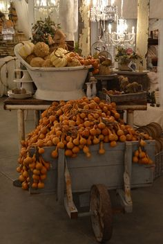 Fall decor displayed in vintage vessels. For  the home.