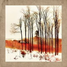"""Red Forest Alsace"" by French artist Jean-Claude Louis. See his gorgeous portfolio on www.ArtsyShark.com"