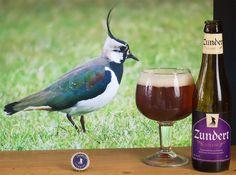 """Zundert trappist - Zundert Trappist (Trappistenbrouwerij De Kievit - Hollande) -  #BeeryChristmas 22/12/2015 -  via """"Saveur-Bière"""" -  Vanneau huppé -  https://twitter.com/FranckRouanet/status/679241350932377600"""